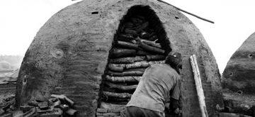 Com 40 milhões de escravos no mundo, Organização Internacional do Trabalho pede mais empenho dos países